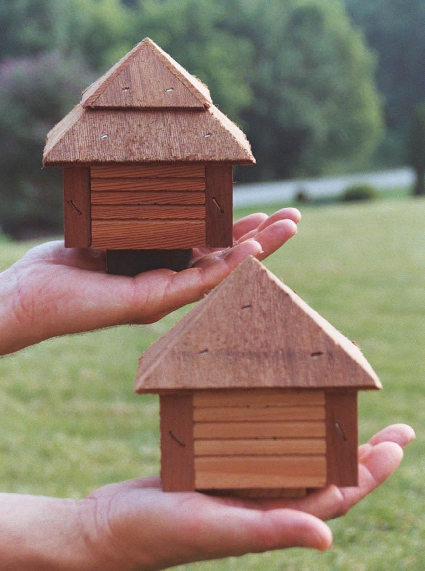 Amish Duck Houses : Design amish bird houses joy studio gallery photo